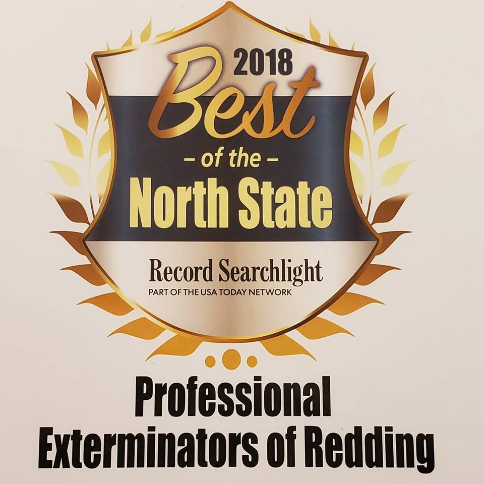 Pro Ext Best of the Northstate