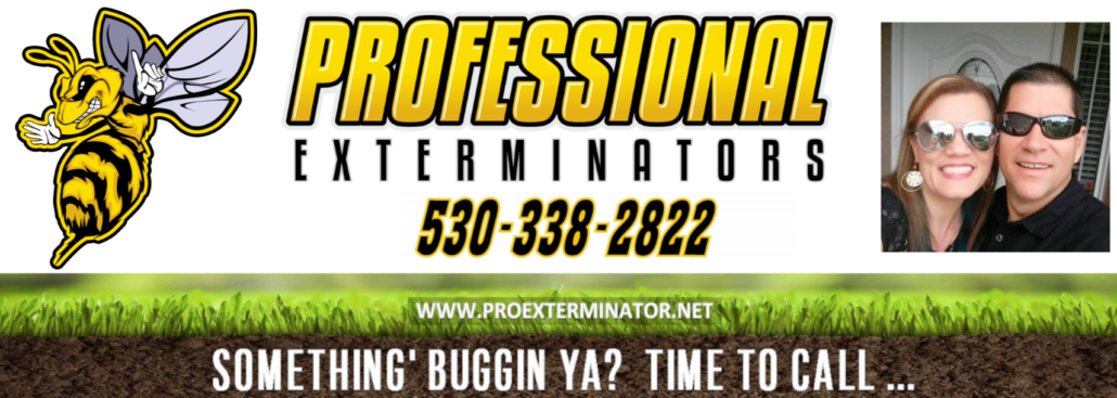 temp cover photo for facebook